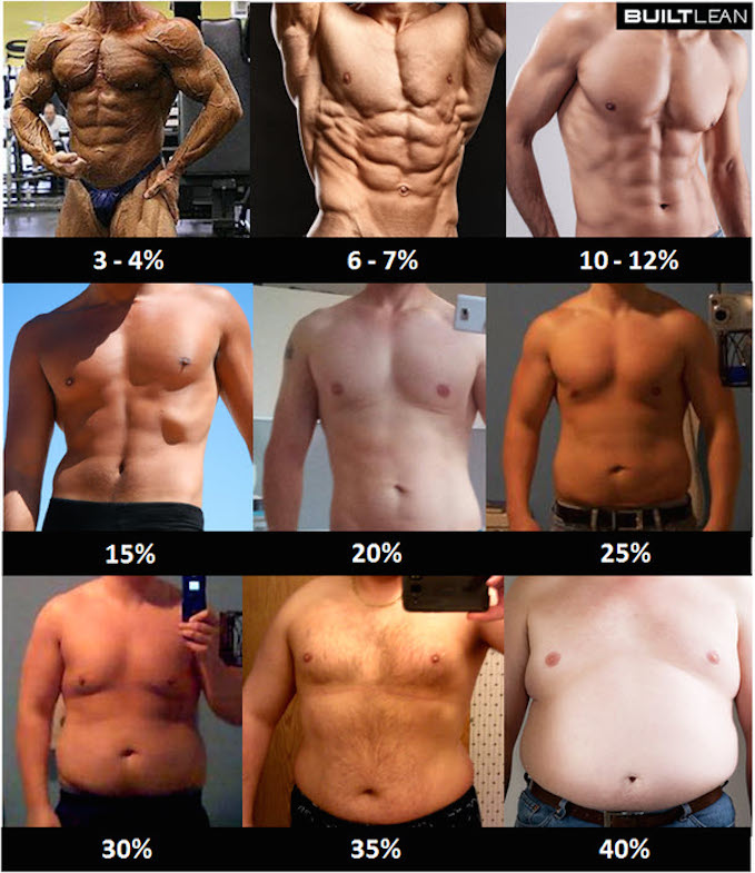 The Ultimate Guide To Measuring Your Body Fat