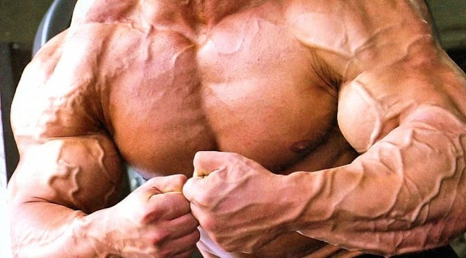 massive muscle steroids